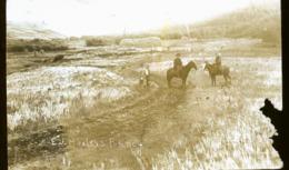 CANADA SHAUNAVON  EN 1922  PHOTO CARTE   RANCH - Altri