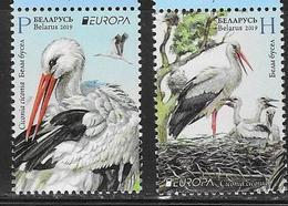 BELARUS, 2019,MNH,EUROPA, BIRDS, STORKS, 2v - 2019