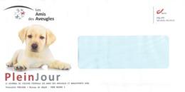 Enveloppe Personnalisée  Les Amis Des Aveugles (Ghlin - Mons - Bergen) Avec Chien Hond Dog Perro - Personalisierte Briefmarken