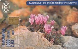 GRECIA. FLOWERS. Cyclamen / Goulla's Castle. 06/2001. X1153. (116). - Flores