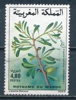 °°° MAROC - Y&T N°1144 - 1993 °°° - Marruecos (1956-...)