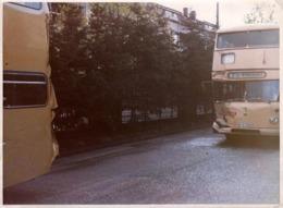 Grande Photo Couleur Originale Accident D'Autocars & Cars à Double étages Vers 1970/80 - Choc Avant - Automobiles