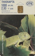 GRECIA. CAMALEON - RANA. Museum 'Goulandris' For The History Of Nature 3 (Young Chame. 04/2001. X1100. (105). - Tarjetas Telefónicas