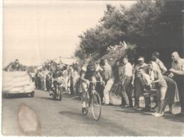 Belle Photo Originale Du Cycliste JACQUES ANQUETIL TOUR DE FRANCE 59 - Cycling