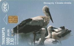 GRECIA. CIGÜEÑAS. Stork Ciconia Ciconia. 05/2001. X1120. (106). - Pájaros