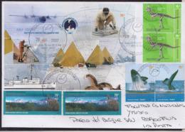 Argentina - 2007 - Dinosaures De L'Antarctique - Plésiosaure - Fossiles - Carnotaurus Sastrei - Storia Postale