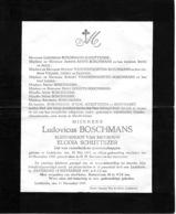 Overlijdensbericht - Ludovicus Boschmans - Schuttijzer  - Liedekerke - Décès