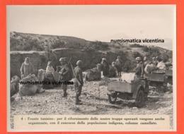 Moto Guzzi Trialce Motorciclo Di Guerra Soldati Italiani In Africa / Tunisia Anni '40 - Guerra, Militari