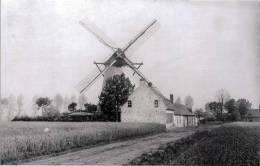 GELUWE Bij Wervik (W.Vl.) - Molen/moulin - De Verdwenen Molen Goemaere Tijdens 1914-1918 (Duitse Opname). Maxikaart - Wervik