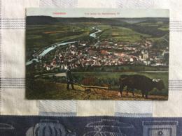 DIEKIRCH  VUE PRISE DU HERRENBERG IV  TRES  BELLE ANIMATION - LABOUREUR  - DES BOEUFS - Diekirch