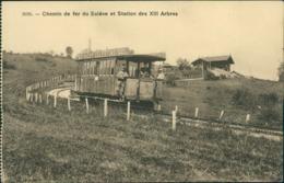 74 MONNETIER MORNEX / Chemin De Fer Du Saleve Et Station Des XIII Arbres / - France