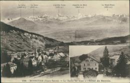74 MONNETIER MORNEX / La Chaine Des Alpes Et Hotel De Savoie / Carte Publicitaire - Altri Comuni