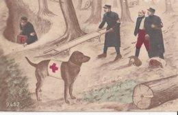 Le Chien Sanitaire Illustrateur Inconnu - War 1914-18