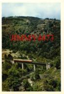 CPM - Autorail Vichy-Langogne Dans Les Gorges De L'Allier Franchissant Le Viaduc De La Madeleine - Cliché Soufflot - Trains