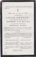 DOODSPRENTJE-PIEUSE-TONGEREN-LOUIS STRICK-HORTENSE VAN MUYSEN-JOSHEPHINE MOORS+15.02.1905-ZIE 2 SCANS - Images Religieuses