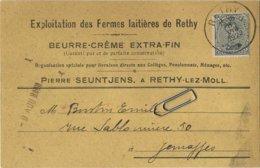 RETIE  (  Rethy )  Lez Mol :  Exploitations Des Fermes Laitières   :   ( 2 Scans ) - Mol