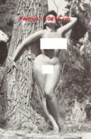 Reproduction D'une Photographie Ancienne D'une Jeune Femme Pulpeuse Nue Appuyée Contre Un Arbre - Reproductions