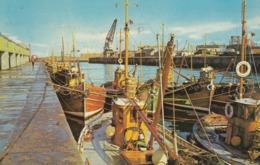 Postcard The Harbour Ayr Fishing Fleet Boats PU 1976 My Ref  B13740 - Fishing