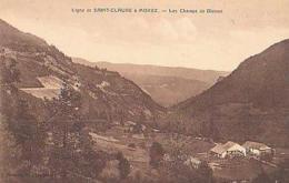 Jura        290        Les Champs De Bienne - France