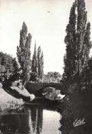 Strasbourg- Bords De L'Aar ** Belle Carte De 1962 **- Ed. Estel N° 948 - Strasbourg