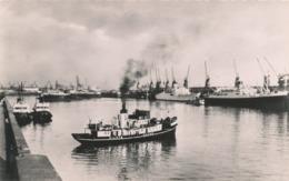 LE HAVRE L' Avant Port , Le Quai Des Remorqueurs Et Le Quai D' Escale (bateau  Pilote Du Havre ) - Le Havre