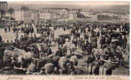 Parthenay : Champ De Foire Un Jour De Marché - Parthenay