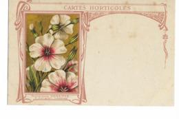 08 - CARIGNAN - GRAINETERIE DENAIFFE - CARTES HORTICOLES . - France