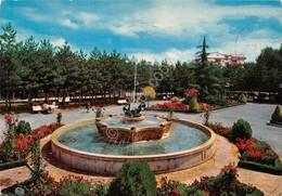 Cartolina Potenza Parco Monte Reale 1981 - Potenza