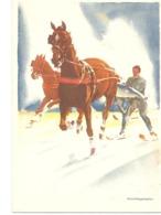 1928   Jeux Olympiques D'Hiver De Saint-Moritz : Carte Officielle :illustrateur :Swan Hugentobler - Inverno1928: St-Morits