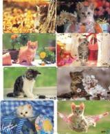 LOTE DE 8 TARJETAS TELEFONICAS DE JAPON. (GATOS - CHATS - CATS) (201) - Gatos