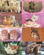 LOTE DE 8 TARJETAS TELEFONICAS DE JAPON. (GATOS - CHATS - CATS) (203) - Gatos