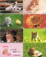 LOTE DE 8 TARJETAS TELEFONICAS DE JAPON. (GATOS - CHATS - CATS) (204) - Gatos
