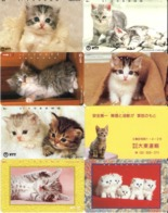 LOTE DE 8 TARJETAS TELEFONICAS DE JAPON. (GATOS - CHATS - CATS) (205) - Gatos