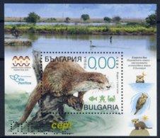 Otter(Lutra Lutra) -  Bulgaria / Bulgarie 2019 -   Souvenir  Block - Stamps