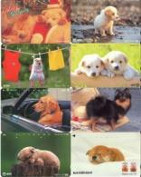 LOTE DE 8 TARJETAS TELEFONICAS DE JAPON. (PERROS - DOGS - CHIENS) (190) - Perros