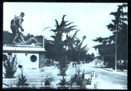 SAN GIORGIO DEL SANNIO - BENEVENTO - 1955 - MONUMENTO AI CADUTI E VIALE SPINELLI - Monumenti Ai Caduti