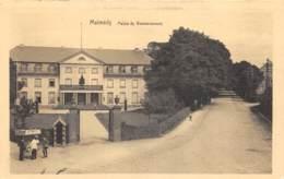 Malmedy - Palais Du Gouvernement - Ed. Delputz - Malmedy