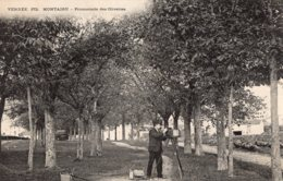 "S3116 Cpa 85 Montaigu - Promenade Des Olivettes "" Photographe "" - Montaigu"