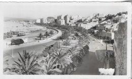 Maroc - TANGER - L'Avenue D'Espagne - Carte Photo - Voir Scan - Recto,Verso - C P A - Vierge - - Tanger