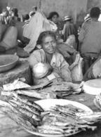 Photo Madagascar Antanosy (Fort Dauphin) Vendeuse De Poissons Grillés Au Marché 1998 Vivant Univers - Afrika