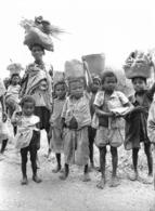 Photo Madagascar Enfants Et Femmes Chargés Sur La Route Antanosy Berenty 1998 Vivant Univers - Afrika