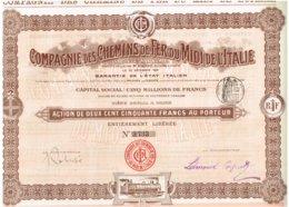 Titre Ancien - Compagnie Des Chemins De Fer Du Midi De L'Italie - Titre De 1905 - Chemin De Fer & Tramway