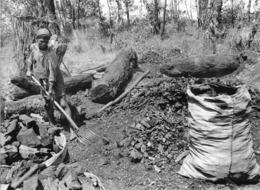 Photo Madagascar Fabrication De Charbon De Bois Région D'Antalaha 1998 Vivant Univers - Afrika