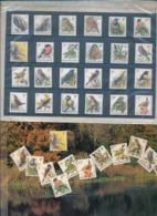BELGIUM BUZIN LIVRE EN FRANCAIS NOTICES EXPLICATIVES ET TIMBRES - 1985-.. Pájaros (Buzin)