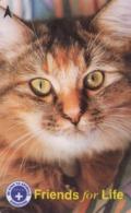 TARJETA TELEFONICA DE SINGAPUR. (GATO) (401) - Gatos