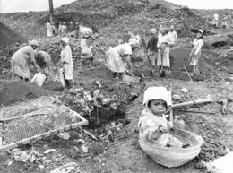 Photo Madagascar Décharge D' Andralanitra. Fabrication De Compost Par Les Femmes 1998 Vivant Univers - Afrika