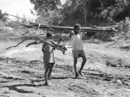 Photo Madagascar Région De Vatomandry Transport Du Bois De Chauffage Par Les Garçons 1998 Vivant Univers - Afrika