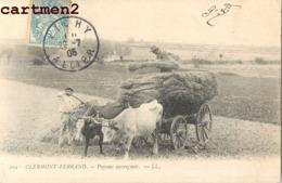 CLERMONT-FERRAND PAYSANS AUVERGNATS ATTELAGE BOEUFS AGRICULTURE 63 - Clermont Ferrand