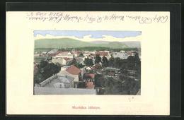 AK Munkacs, Latkepe, Panoramaansicht - Ukraine