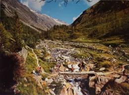 Am Furggbach Im Furggtal Bei Saas Almagell,  VALISE , Suisse.  Vierge - VS Valais